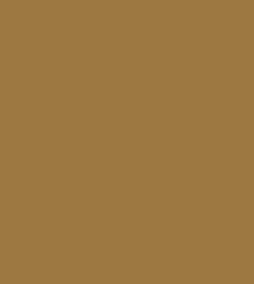 PAG Conseils logo